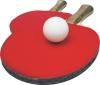 15 июля 2018 г. (воскресенье) ветеранский турнир выходного дня в клубе настольного тенниса
